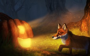 Picture autumn, forest, night, Fox, Halloween, Jack, by CreeperMan0508