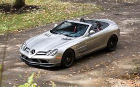 Picture Roadster, Mercedes - Benz, SLR MCLAREN, 722 S R 199