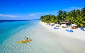Picture beach, palm trees, the ocean, island, The Maldives, resort, Laguna