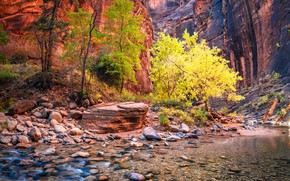 Picture Utah, USA, Zion National Park