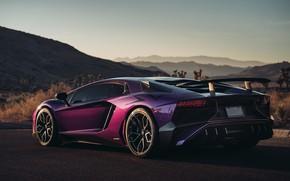 Picture Lamborghini, supercar, rear view, Aventador, HRE, Superveloce, LP-750, Aventador SV, Viola Parsifae
