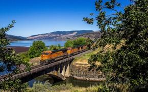 Wallpaper landscape, bridge, train