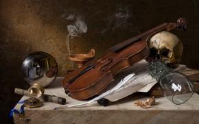 Picture notes, pen, violin, glass, skull, ball, walnut, still life