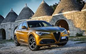 Picture Alfa Romeo, 2019-20, Stelvio Fast