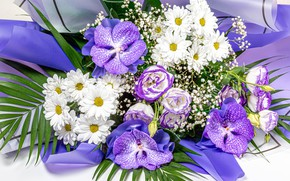 Picture photo, Flowers, Bouquet, Orchids, Chrysanthemum, Eustoma