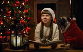 Picture smile, mood, dog, Christmas, girl, lantern, pug, New year, book, tree, cap, braids, George Bondarenko