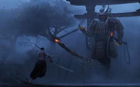 Picture armor, samurai, guy