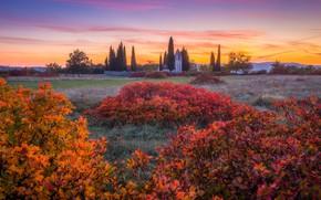 Picture autumn, landscape, sunset, nature, Church, the bushes, Slovenia, St. Kvirik church