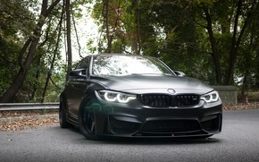 Picture BMW, Light, Black, Sight, F81
