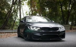 Wallpaper Light, F81, BMW, Sight, Black