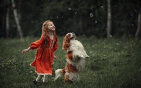 Picture bubbles, dog, girl, red, Spaniel