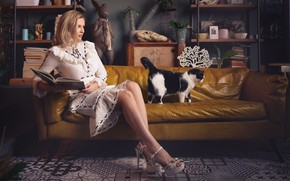 Picture cat, girl, pose, sofa, dress, book, legs, Sergey Gokk
