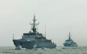 Picture Baltika, Alexander Obukhov, Ivan Antonov, minesweepers, basic
