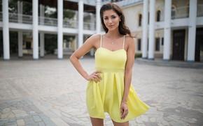 Picture girl, smile, hair, dress, Dmitry Shulgin