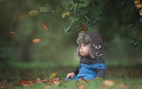 Picture leaves, branches, nature, baby, child, toddler, Baksza Daniel