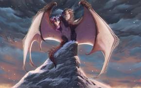 Picture dragon, snowfall, dragon, snowfall, a mythical creature, fantasy art, mountain top, dark skies, the top …