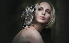Picture eyes, look, girl, face, the dark background, each, owl, bird, haircut, portrait, turn, blonde, friendship, …