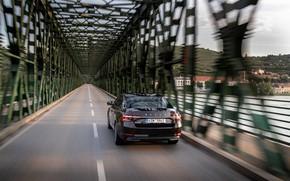 Picture bridge, speed, sedan, Skoda, Skoda, four-door, Superb, 2020, the color is a dark unfiltered beer