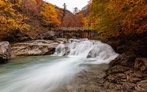 Picture autumn, trees, bridge, river, Spain, cascade, Spain, Ordesa and Monte Perdido National Park, The Ordesa …