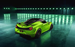 Picture rear view, 2018, Green Arrow, Centurion, Alfa Romeo 4C, Pogea Racing