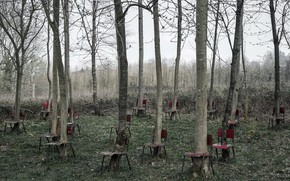 Picture trees, nature, chairs