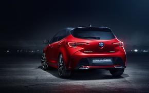 Picture Toyota, hatchback, Hybrid, 2018, Corolla