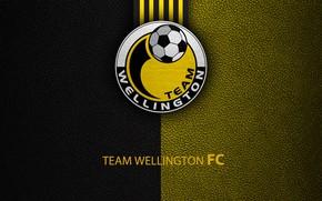 Picture wallpaper, sport, logo, football, Team Wellington