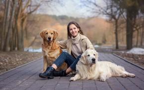 Picture animals, dogs, girl, Park, brown hair, Retriever, Victoria Dubrovskaya