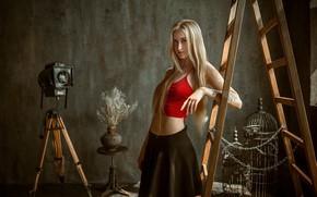 Picture look, girl, light, figure, ladder, beautiful, Albert Forest