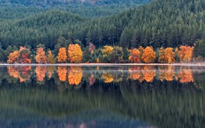 Wallpaper autumn, forest, water, trees, mountains, lake, reflection, shore, Scotland, Loch Morlich