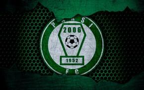 Picture wallpaper, sport, logo, football, Paks