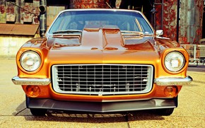 Picture Chevrolet, Vega, Vehicle