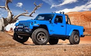 Picture Gladiator, Jeep, 2019, Jeep J6