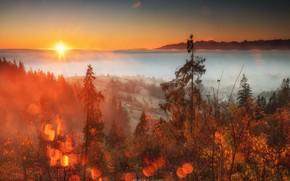 Picture autumn, the sun, landscape, nature, fog, dawn, morning, valley, village, Poland, bokeh, Sośnicki Michael