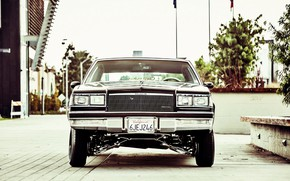 Picture Car, Lowrider, Buick, Regal