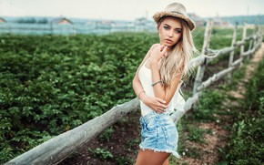 Picture girl, shorts, long hair, legs, field, hat, photo, photographer, blue eyes, model, bokeh, lips, face, …