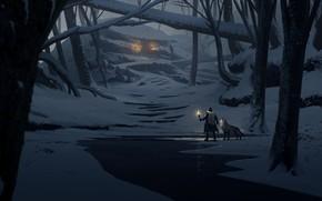 Picture light, fantasy, trees, night, winter, snow, man, animal, wolf, digital art, artwork, wizard, fantasy art, ...