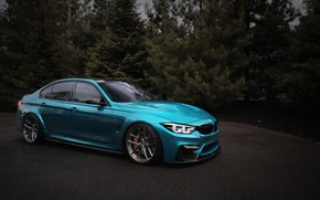 Picture BMW, Light, Blue, Tree, Evening, F80, LED