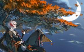 Picture autumn, night, tree, guy, Genshin Impact, Kaedehara Kazuha