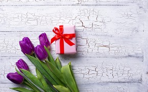 Picture gift, tape, tulips