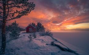 Picture winter, snow, trees, sunset, Norway, house, Norway, RINGERIKE, Ringerike, frozen lake