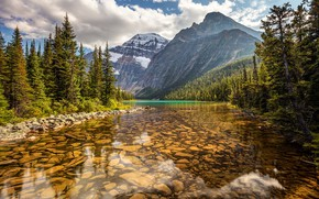 Picture forest, trees, mountains, lake, Canada, Albert, Alberta, Canada, Jasper National Park, Rocky mountains, Jasper national …