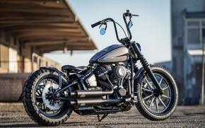 Picture Harley Davidson, Bike, Harley-Davidson, Custom, Thunderbike, By Thunderbike, Street Crosser
