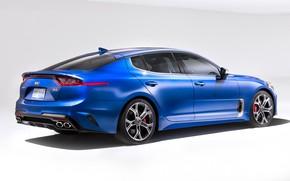 Picture cars, blue cars, kia, worth, kia stinger