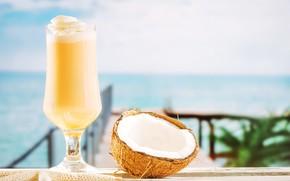Picture sea, Palma, glass, coconut, cocktail