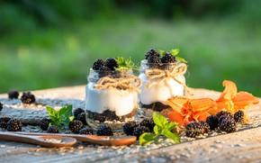 Picture berries, BlackBerry, yogurt