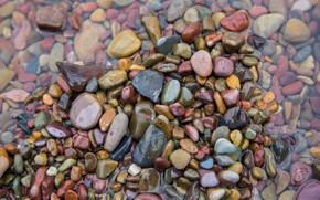 Picture water, nature, stones