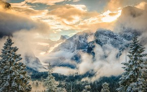 Picture winter, frost, clouds, mountains, fog, morning