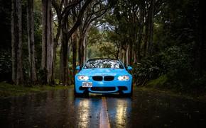 Picture road, rain, BMW, BMW, Hawaii, blue, Hawaii