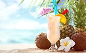 Picture ice, cherry, umbrella, glass, orange, coconut, cocktail, pineapple, plumeria, Pina colada